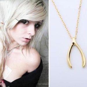 Jewelry - NEW wishbone necklace
